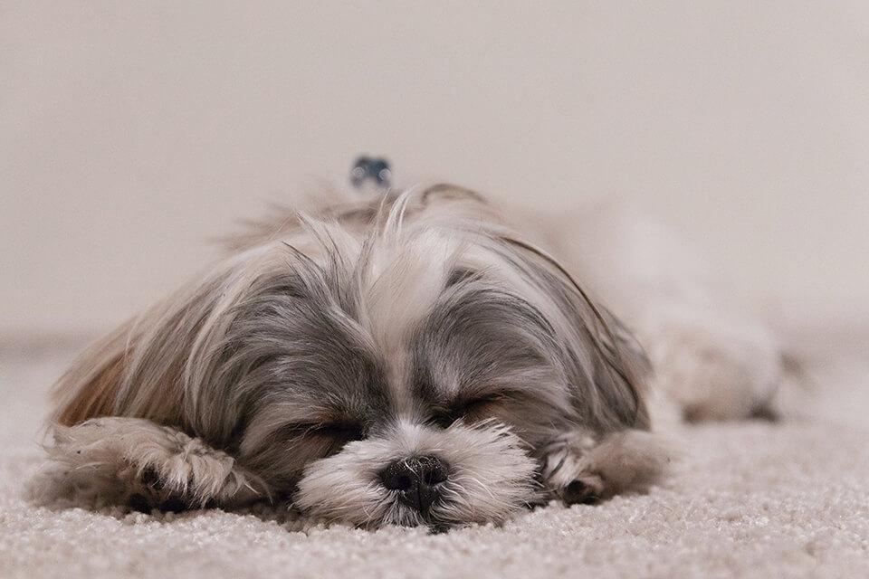 床太硬墊軟墊好嗎?想要睡硬床可以這樣挑